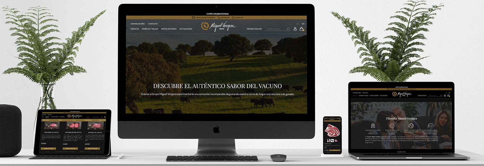 Grupo Miguel Vergara estrena página web con tienda online integrada: miguelvergara.com